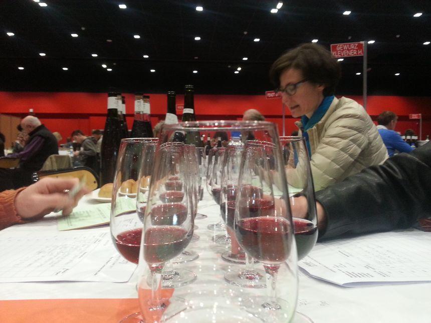 Le jury évalue les vins d'Alsace