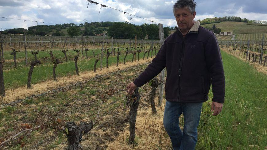 Michel Durand, gérant du château de la Mouthe dans le Bergeracois a peur de perdre au moins 70% de sa récolte.