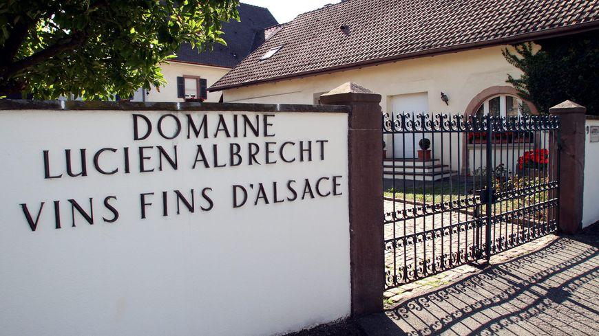 Depuis la faillite de la maison Albrecht, les viticulteurs n'ont pas été payés