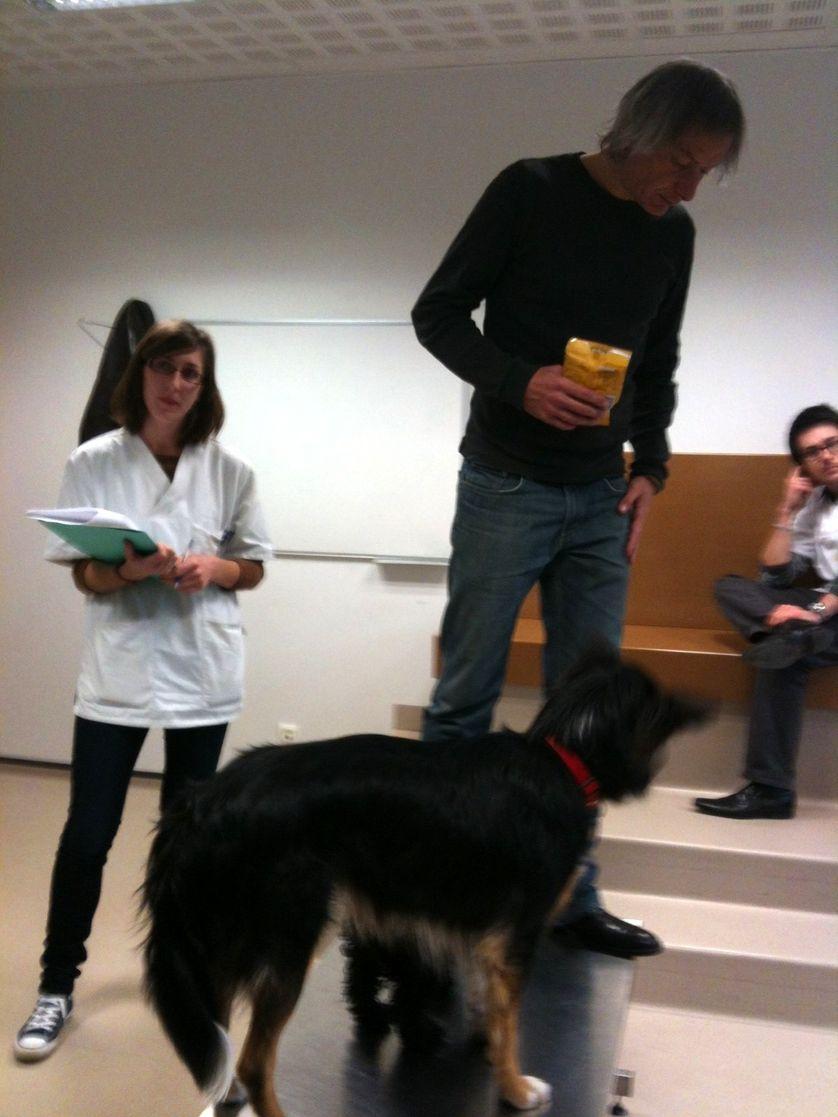 A l'école vétérinaire d'Alfort