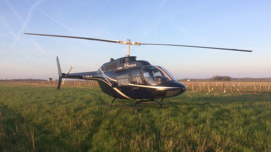 14 hélicoptères stationnent dans les vignes d'Indre-et-Loire, prêts à décoller pour réchauffer et assécher l'air. Un dispositif d'une ampleur jamais vue en France.