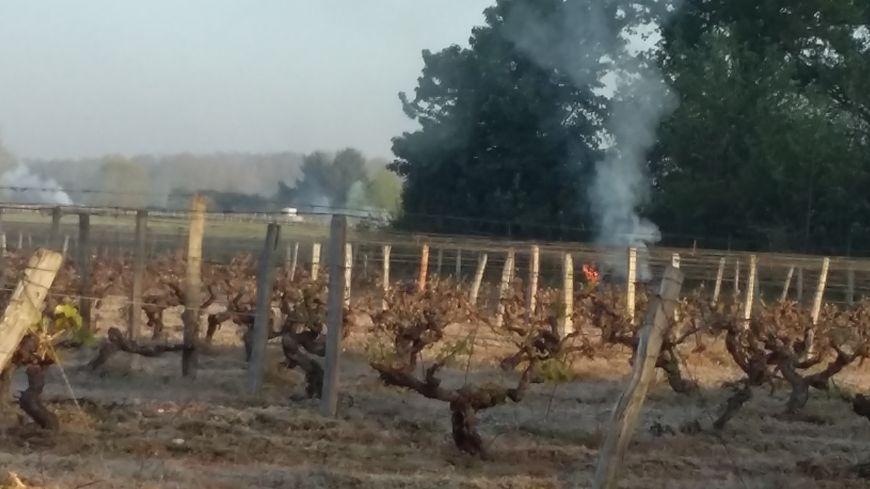 Les viticulteurs font brûler des bottes de paille pour créer un écran de fumée et protéger les vignes du soleil levant
