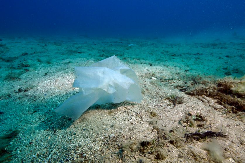 Sac plastique en Méditerranée