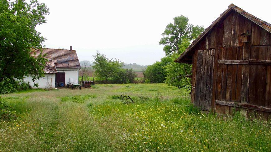 Diebolsheim, sur la motte castrale