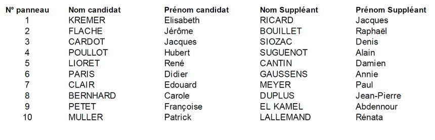 Les candidat(e)s dans la 5e circonscription de Côte-d'Or