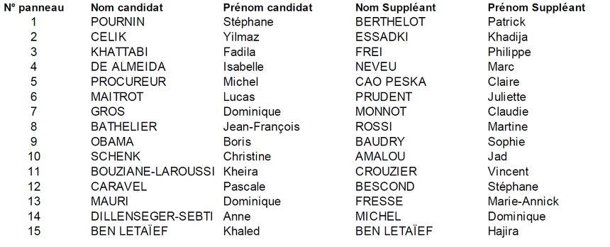 Les candidat(e)s dans la 3e circonscription de Côte-d'Or