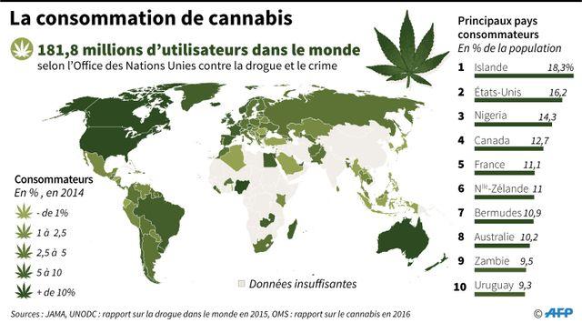 La consommation de cannabis dans les principaux pays consommateurs