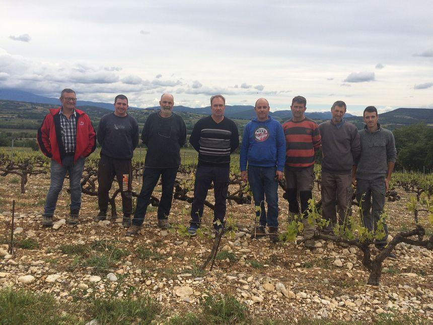 Les viticulteurs de la Cave Coopérative des Coteaux de Saint-Maurice sont dépités devant les dégâts causés par le gel puis la grêle.