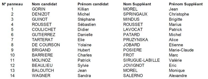 Les candidat(e)s dans la 4e circonscription de Côte-d'Or