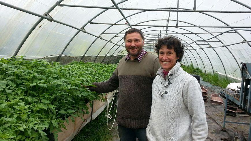 Isabelle et Philippe produisent des légumes bio et élèvent des agneaux et des volailles à Tannerre en Puisaye.