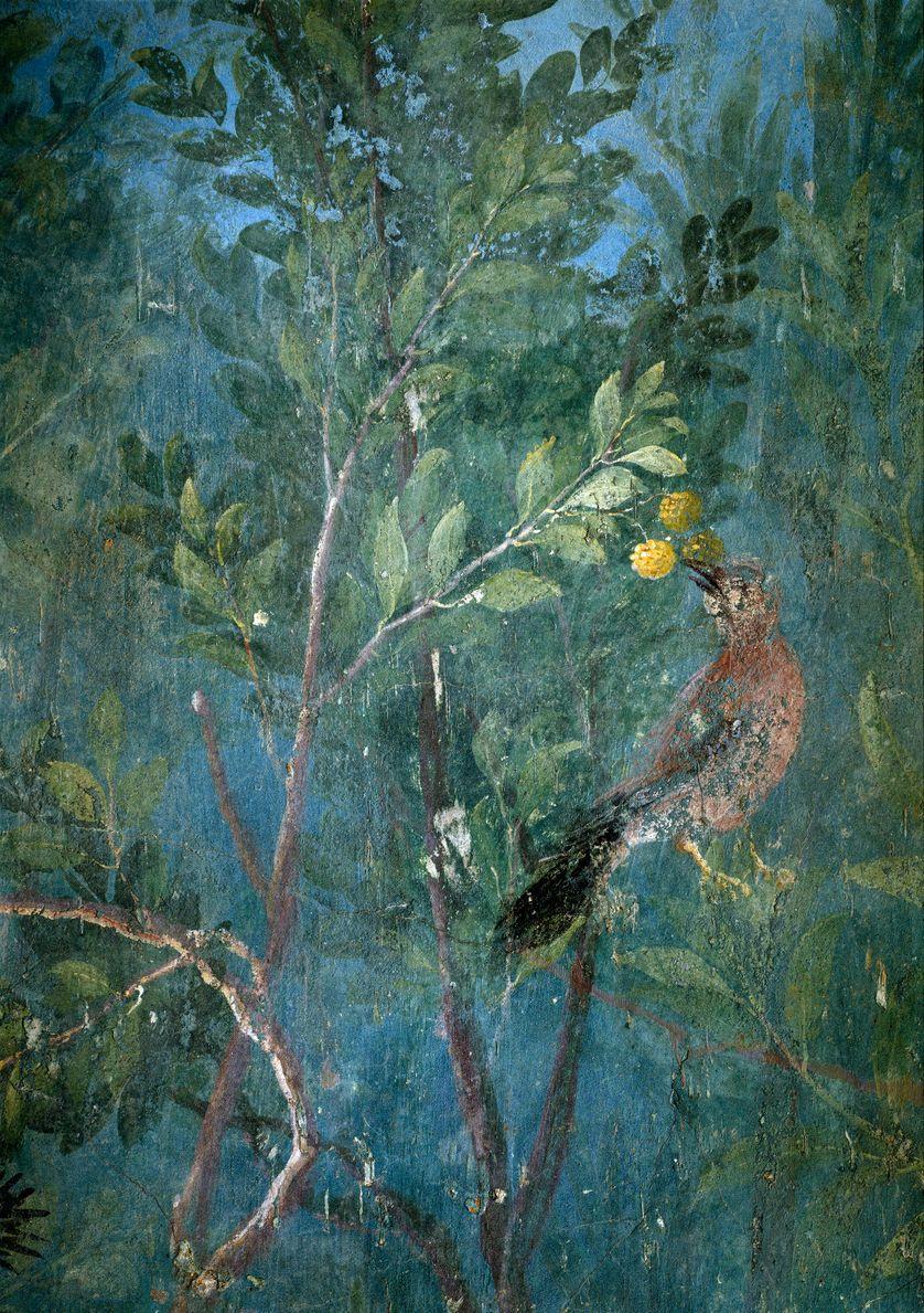 "Art romain : ""jardin romain peint donnant l'illusion d'un vrai jardin"" fresque de la villa Livia, Rome, 02/10/2016"