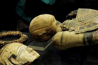 Quand des chercheurs se penchent sur l'ADN de momies égyptiennes