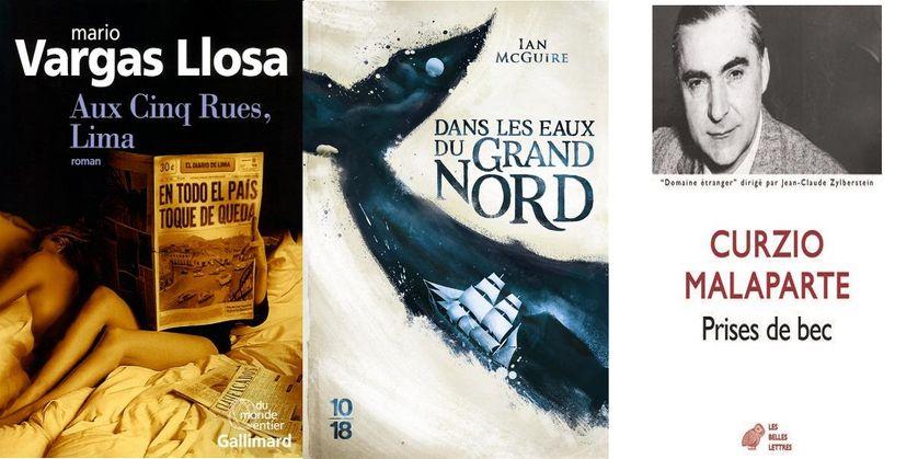 """couvertures de """"Aux cinq rues, Lima"""", """"Dans les eaux du Grand Nord"""" et """"Prises de bec"""