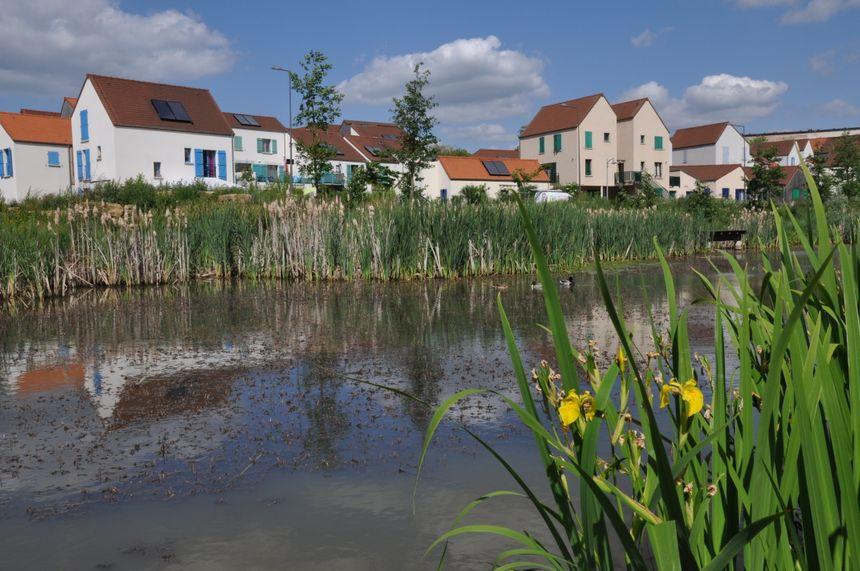 Aujourd'hui, le quartier des Brichères dispose même d'un étang.