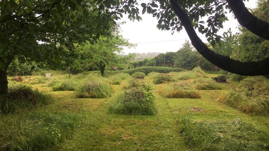 Dordogne Visite Au Jardin D Helys Oeuvre Entre Nature Et