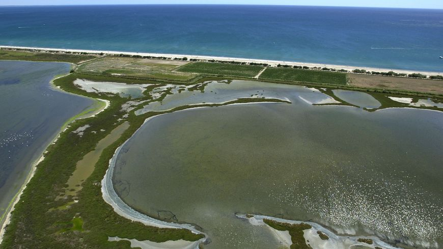 Un des étangs de la 1e circonscription