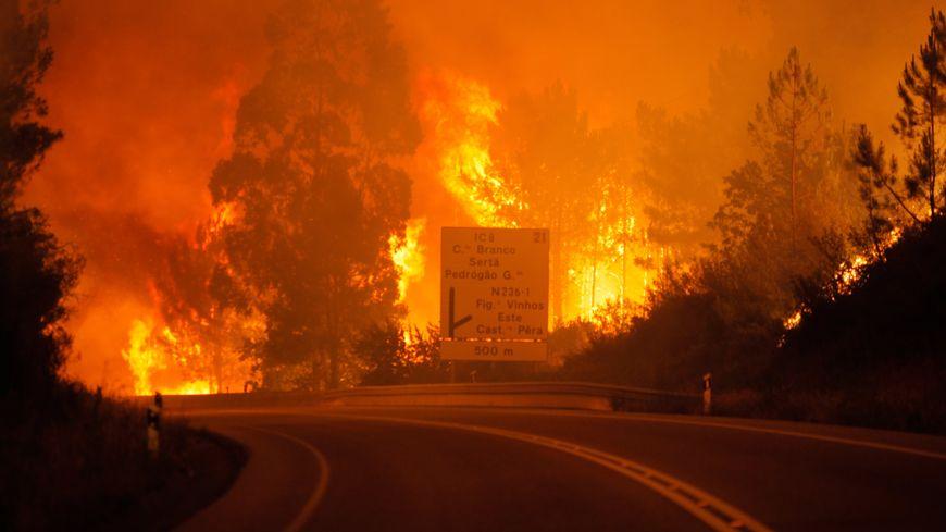 Un violent incendie fait de nombreuses victimes dans la région de Leira au Portugal