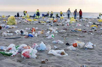 Récupérer le plastique des plages, et le transformer en partie en bouteilles de shampoing