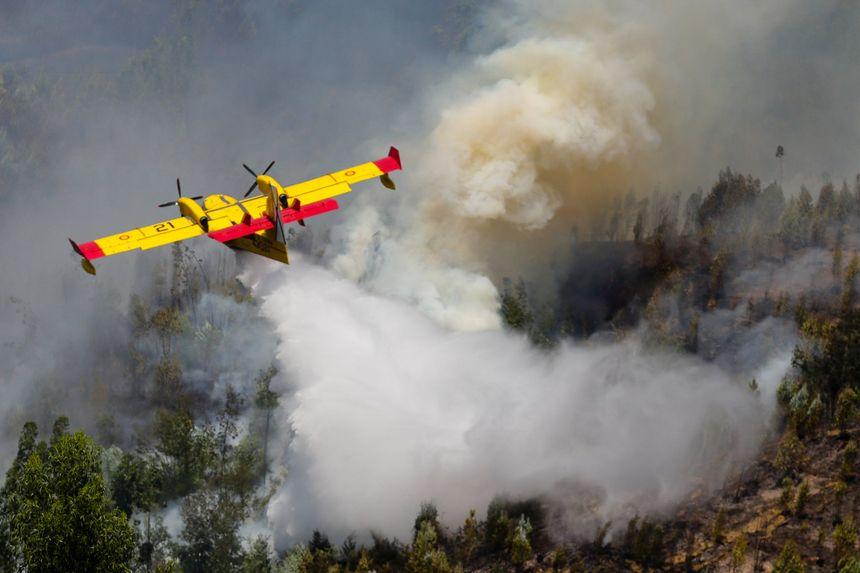 Un Canadair espagnol en action pour éteindre le violent incendie de forêt au Portugal