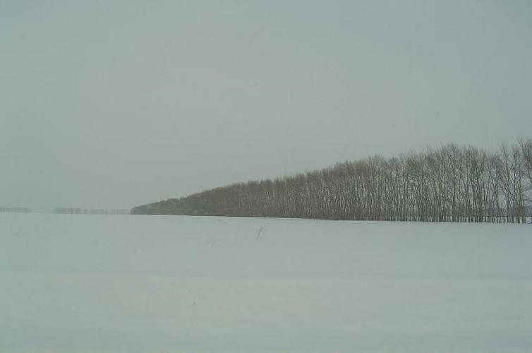 Steppe sibérienne, 28 décembre 2006