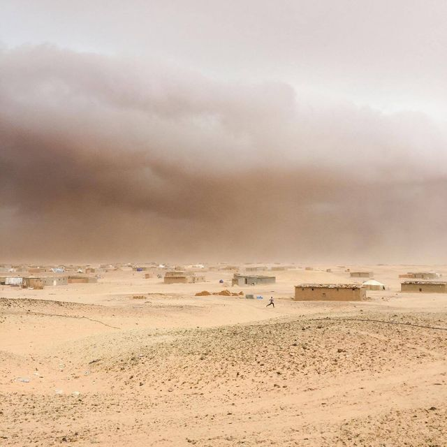 A youngster running to take a shelter from a sandstorm in the refugee camp of Boujedour, region of Tinduf,Algeria, 2016