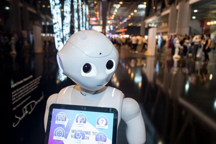 Des robots à tous les prix