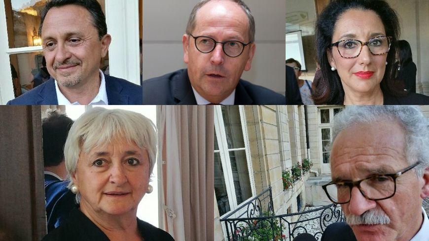 De haut en bas, de gauche à droite : Didier Martin, Rémi Delatte, Fadila Khattabi, Yolaine de Courson, Didier Paris