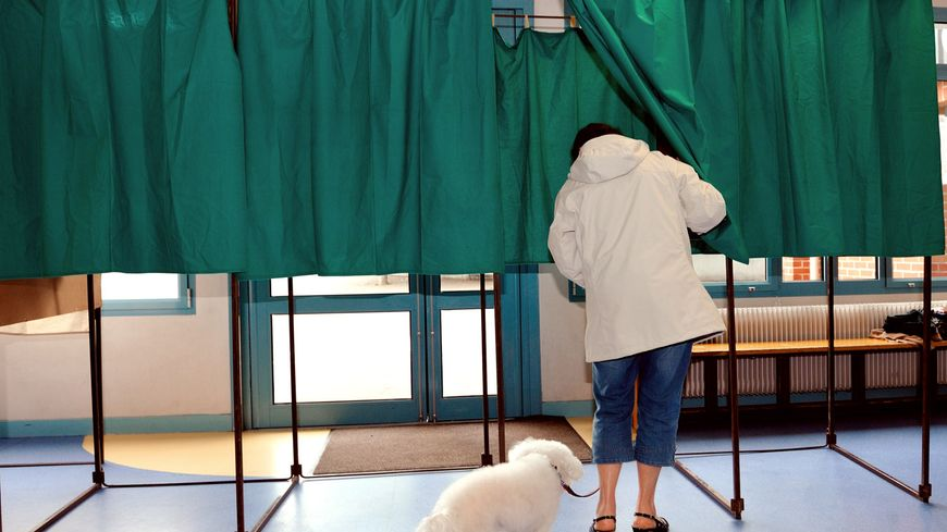 Les élections législatives ont lieu les 11 et 18 juin 2017.