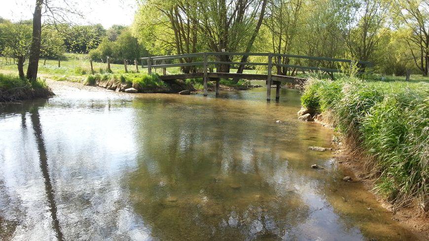 La baisse du débit des cours d'eau est plus imporante qu'attendue, selon la préfecture