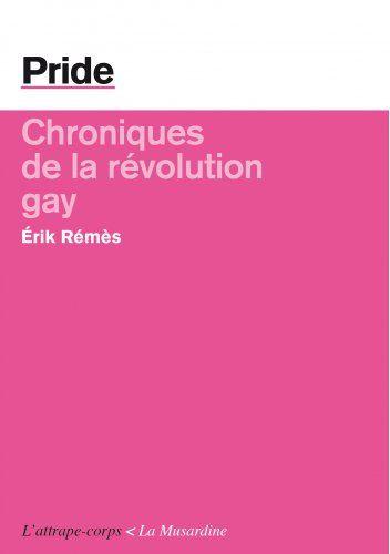 Chroniques de la révolution gay // Erik Rémès