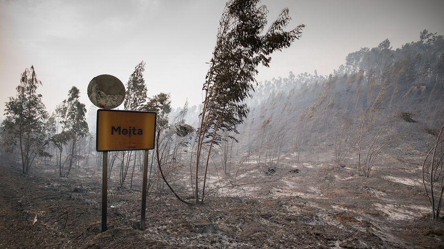 L'incendie a tout détruit sur son passage, laissant des zones désertes.