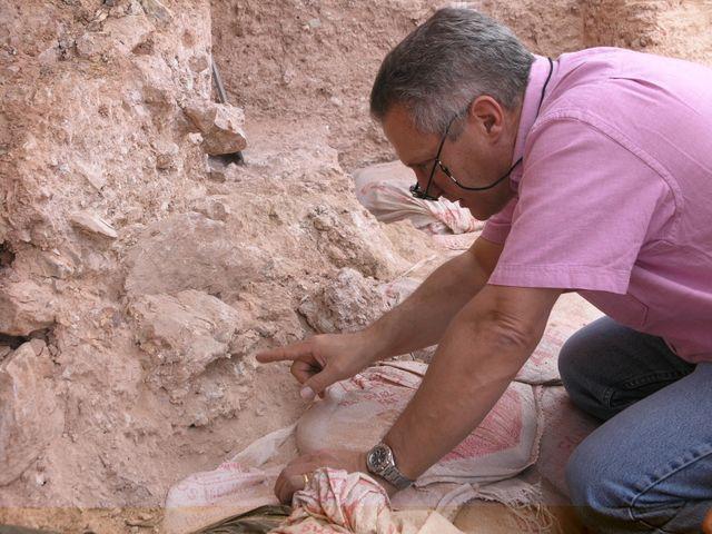 Le Dr Jean-Jacques-Hublin sur le site de Jebel Irhoud (Maroc). Il indique le crâne humain écrasé (Irhoud 10) dont les orbites sont visibles au-delà de l'extrémité du doigt