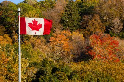Drapeau Canadien - province de Montréal