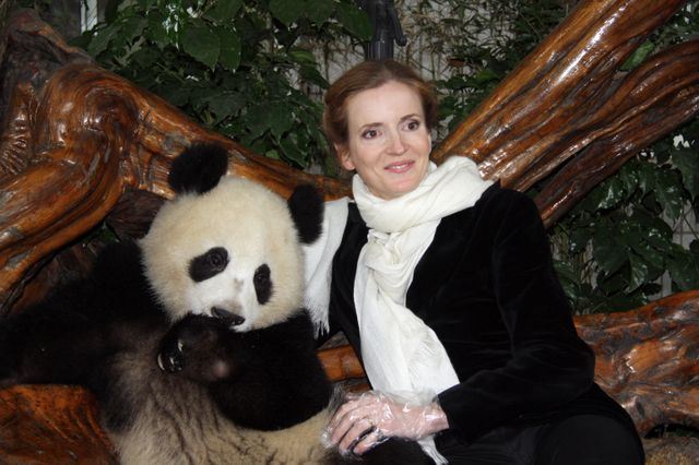 NKM, alors ministre de l'Ecologie, en train de taper sur des bambous à la réserve de Chengdu
