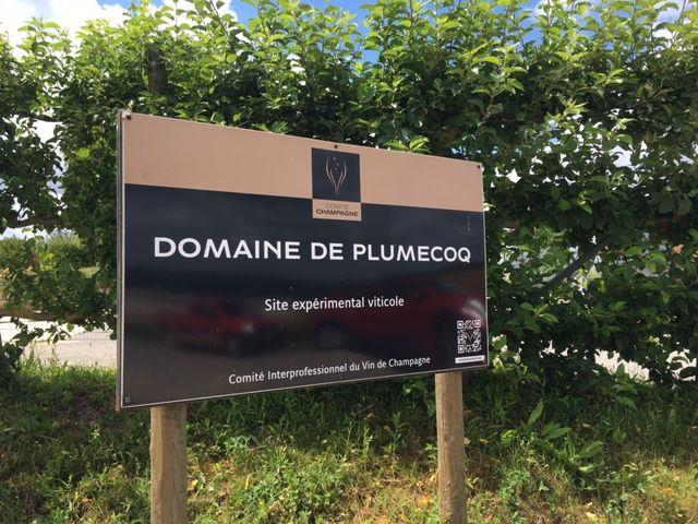 Le domaine de Plumecoq: un véritable laboratoire expérimental