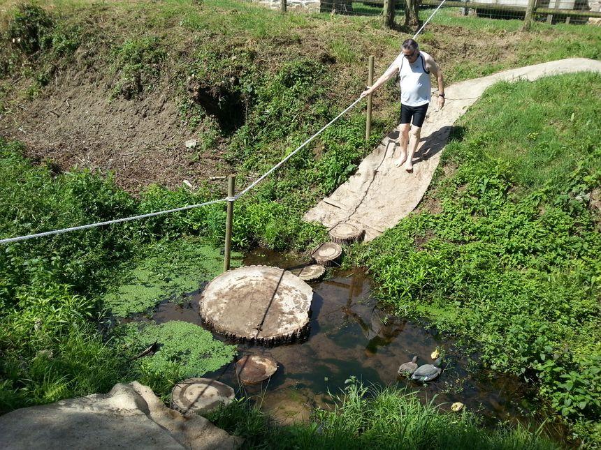 Le sentier passe aussi par le ruisseau attenant au canal.