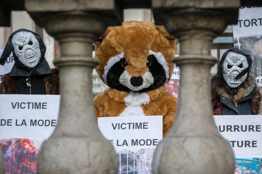 Manifestation contre les animaux massacrés et torturés pour produire des vêtements.