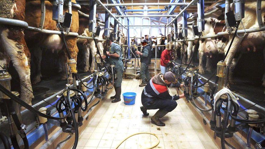 Ce dispositif a déjà permis à 44 agriculteurs d'Isère, de Savoie et de Haute-Savoie de partir en vacances.