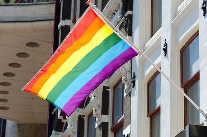 Drapeau de la communauté gay