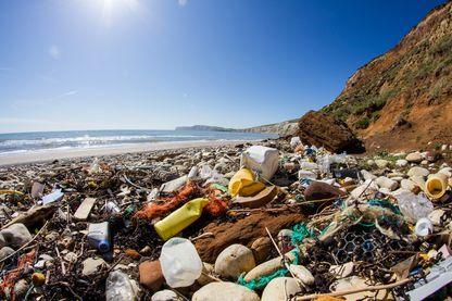 Le 7ème continent : ces déchets qui évoluent dans le nord de l'océan Pacifique
