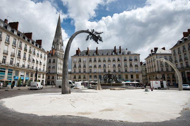"""""""La terre où les arbres rêvent"""" par Laurent Pernot, installé Place Royale"""