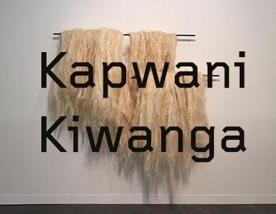 Kapwani Kiwango, crédit : galerie Jérôme Poggi