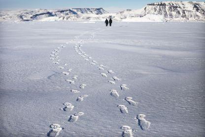 L'opération IceBridge de la NASA étudie la façon dont la glace polaire a évolué au cours des neuf dernières années et lance actuellement un ensemble de vols de recherche sur l'océan Arctique pour surveiller la perte de glace en Arctique