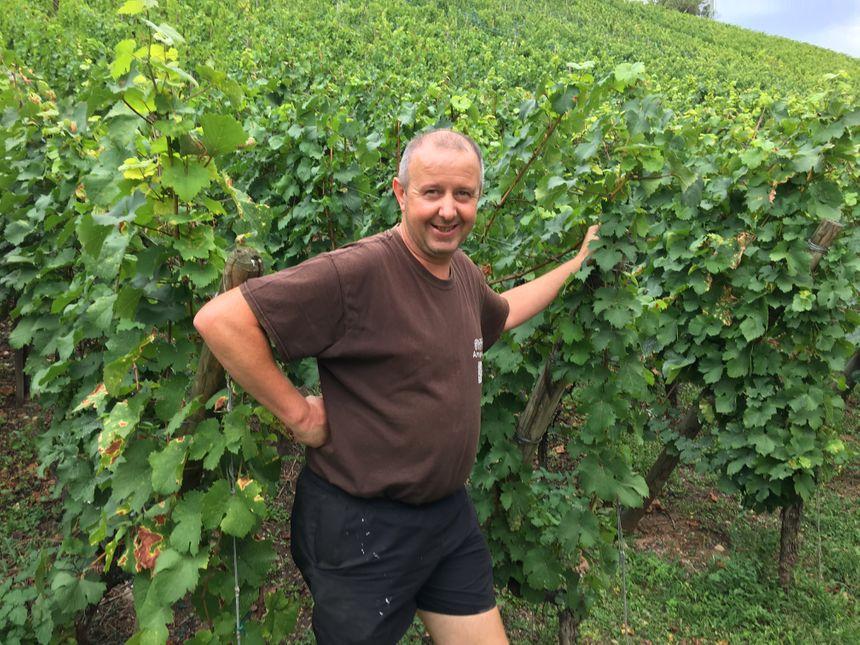 Laurent Schaller, guide vigneron