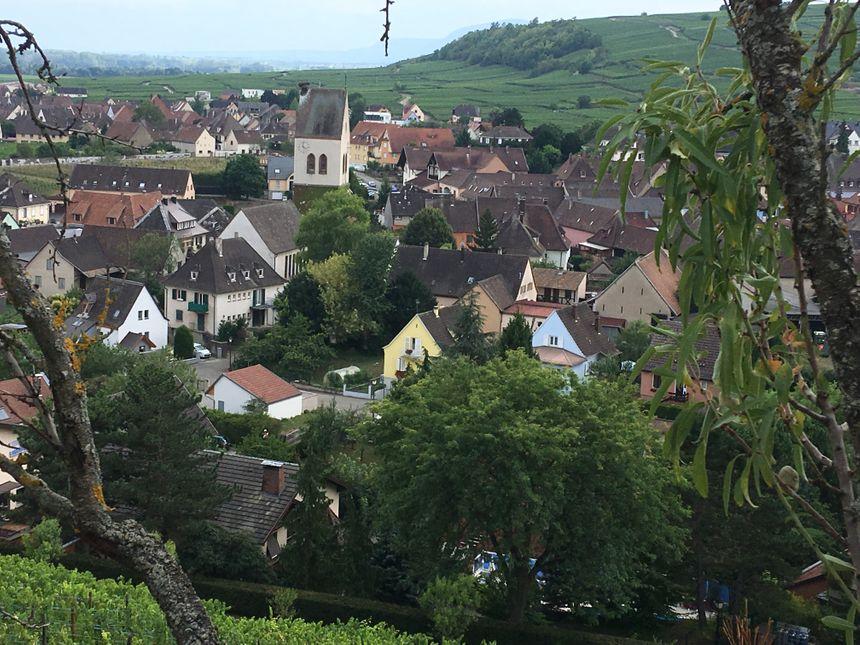 Mittelwihr, depuis la colline des amandiers