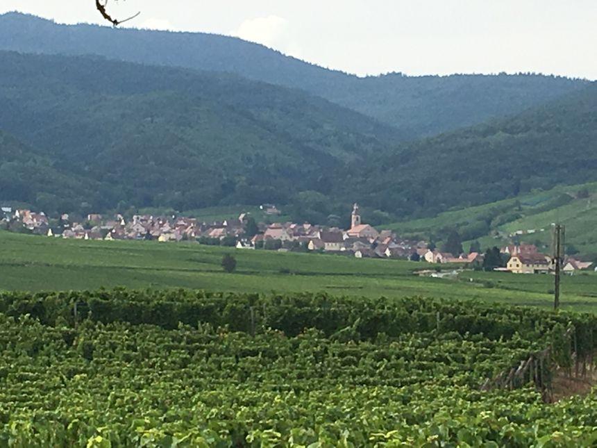 Le village de Riquewihr, l'un des plus beaux de la région