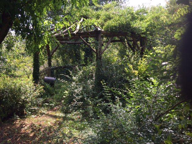 """Dans le jardin pensé en """"permaculture"""" de Bourrou"""