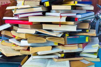 Les livres à lire, ou pas, par les critiques littéraires du Masque et la Plume
