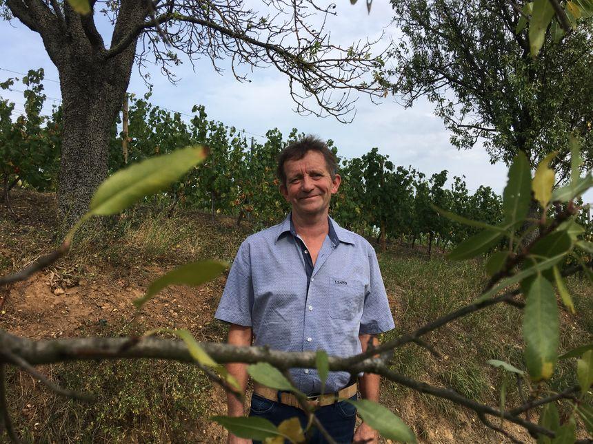 Philippe Scheidecker, vigneron et adjoint au maire de Mittelwihr