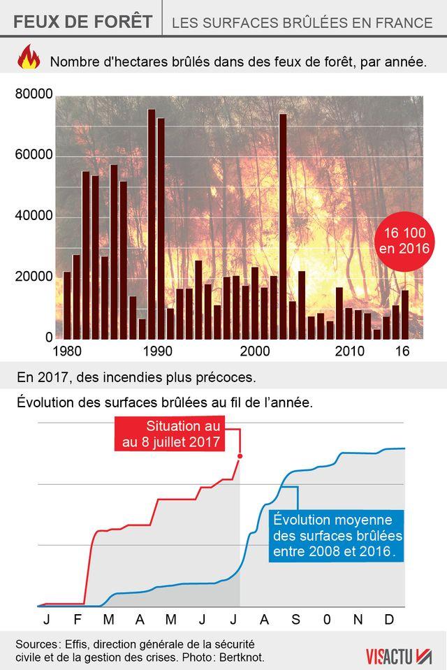 Historique du nombre d'hectares brûlés en France depuis 1980